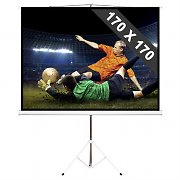 244cm Stativ-Leinwand 170x170cm 1:1